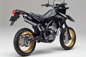 CRF250 L/M MX BP 12