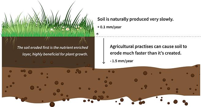 soil_erosion.png