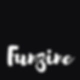 funzinedownload.png