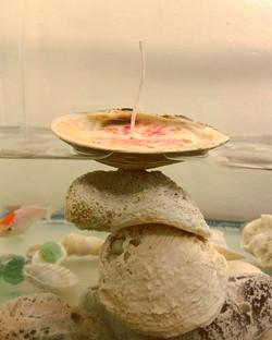 Lalita's Shell Candles