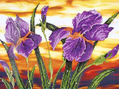 Diamond Dotz Iris Sunset Diamond Facet Art Kit