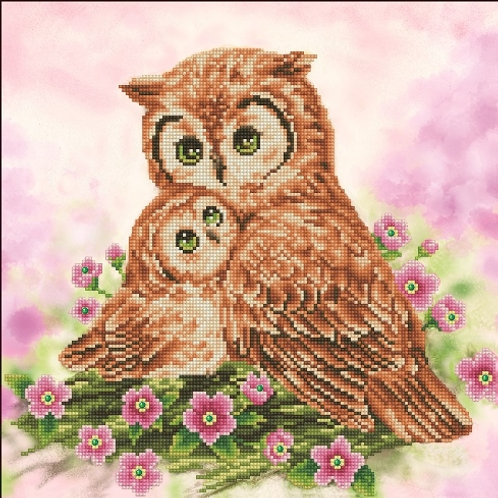 Mother & Baby Owl