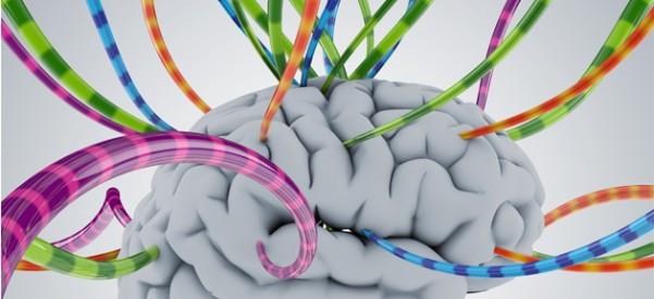 Aprendizado-on-line-cérebro-601x275.jpg