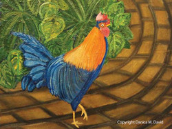 Apothecary Hall Rooster
