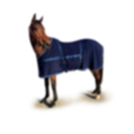 Terry Cloth Blanket, Custom Horse Blanket, Ride Every Stride Custom