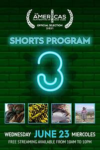 Poster_SHORTS-Prog-3.png