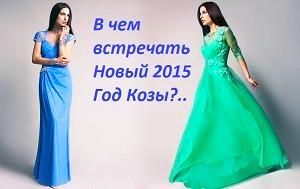 noviy-god-2015-v-chem-vstrechat_edited.jpg