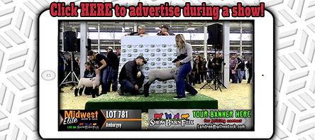 Webcast Advertising2.jpg