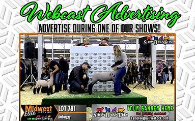 Webcast Advertising.jpg