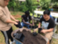 Henderson students repotting basil.jpg