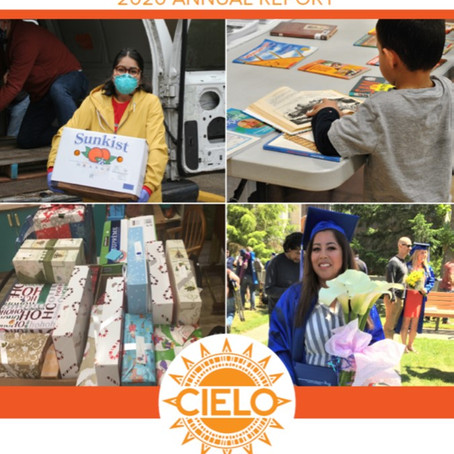 CIELO 2020 Report