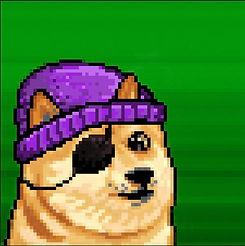 pirate-hip-doge.jpg