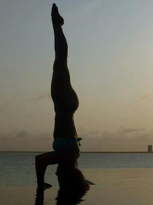 July 14th: Karine @ Modo Yoga-Las Vegas (11am)