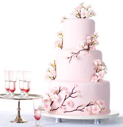 Bestel een taart !