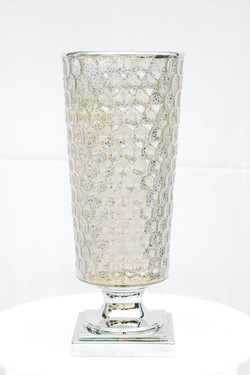 Silver Spotted Urn