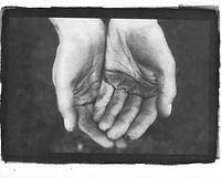 Hands-Kallitype-Printscan.jpg