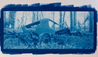 Woodland wreck
