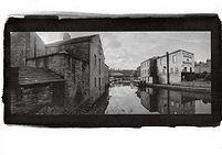 Canal-Kalli-Gold.jpg