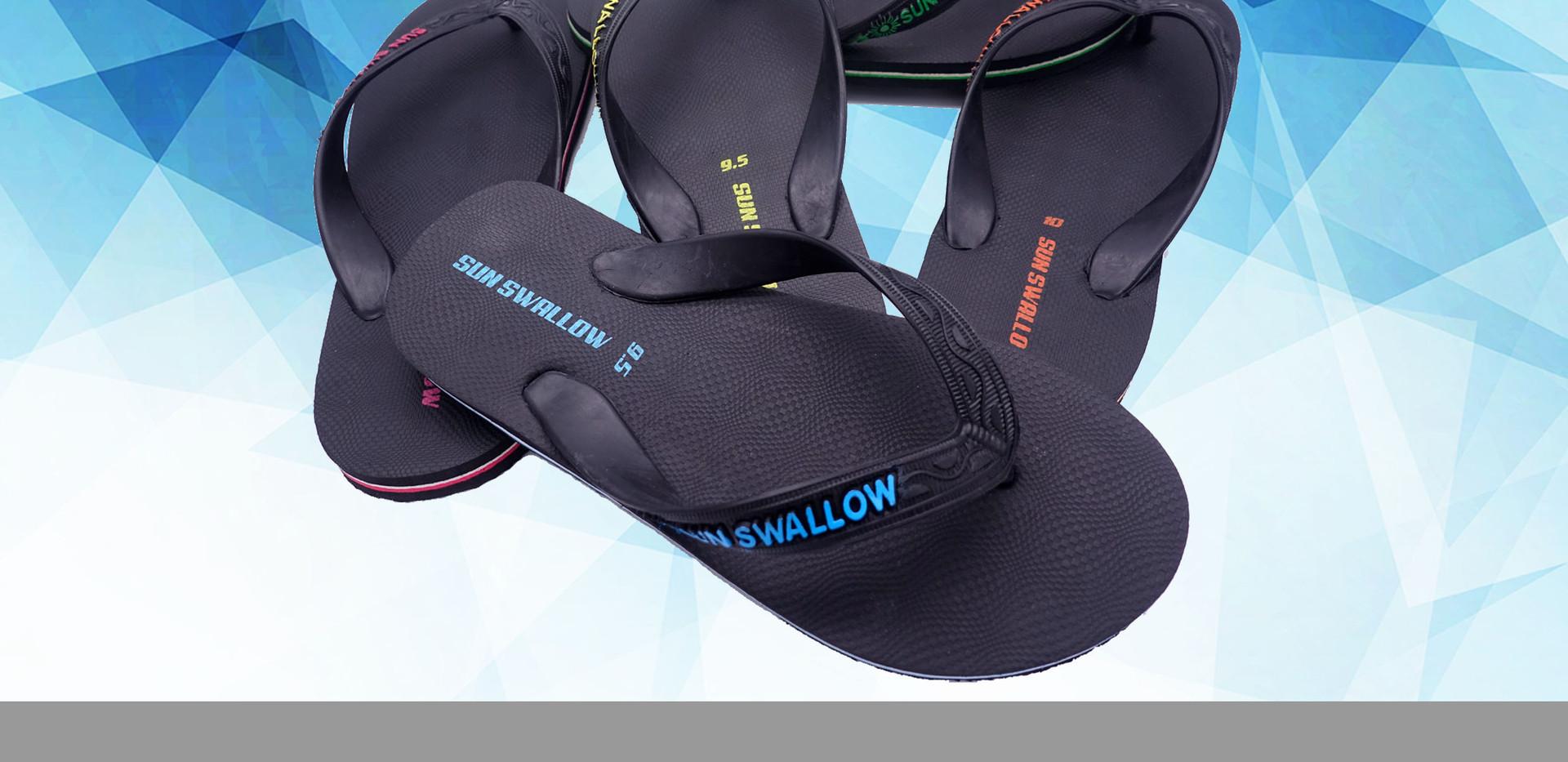 6- Sunswallow HTM EX.jpg