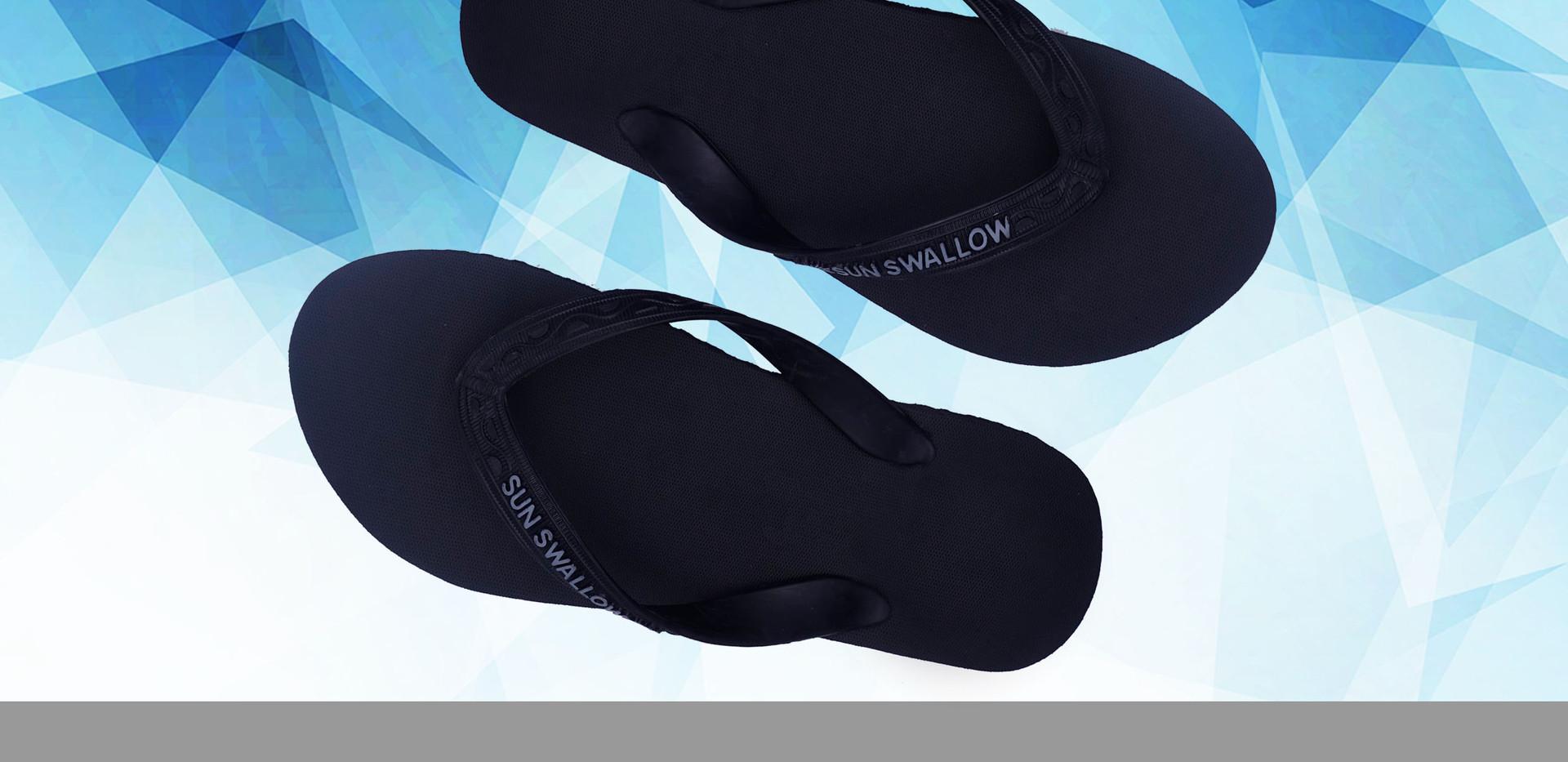 3- Sunswallow BLACK.jpg