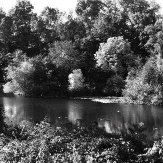Centennial Lake.jpeg