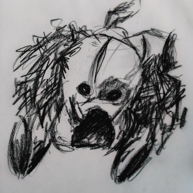 """""""Stuffed Dog Study"""" 8.5x11 in."""