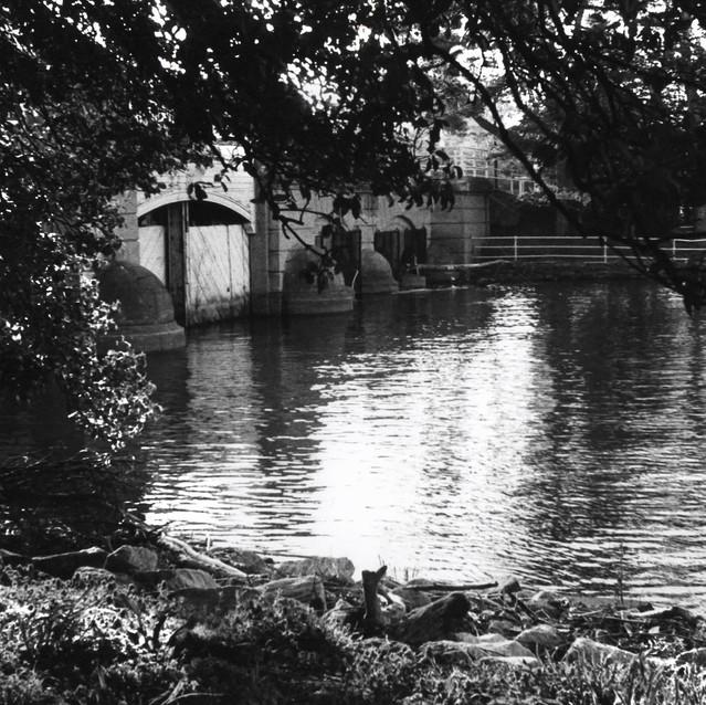 Potomac 3.jpeg