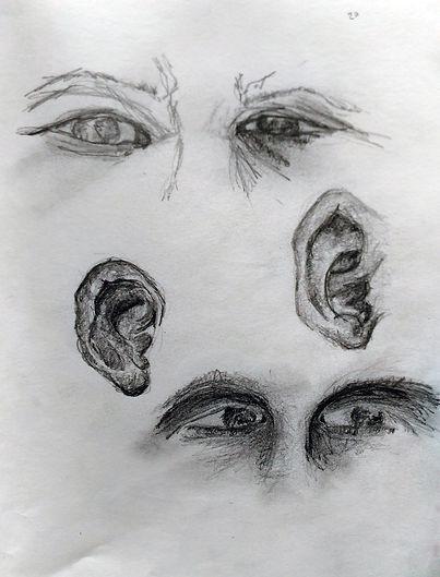 Ear Eye Study Drawing