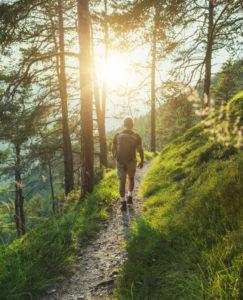 Image of man walking among nature