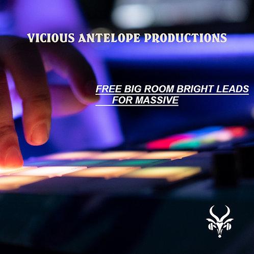 Big Room Bright Leads for Massive - FreePack