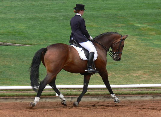 Heather Oleson and Victor, Dressage at Devonwood 2008
