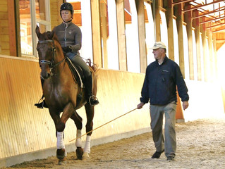 Getting the most out of Dressage lessons
