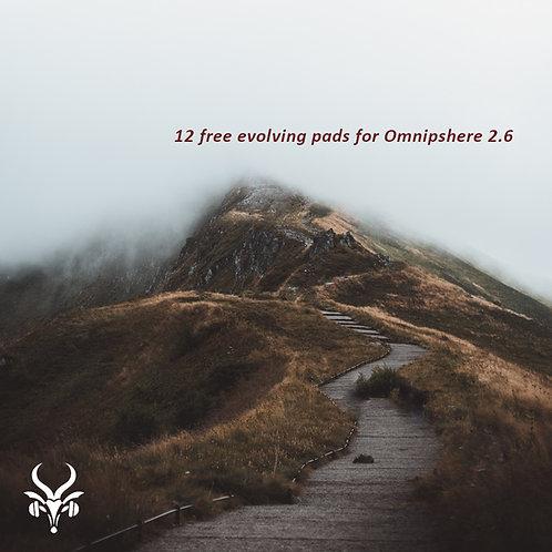 The 12 Paths - Omnisphere2 Free Presets