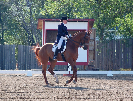 Escorial and Heather Oleson competing in FEI Intermediare I