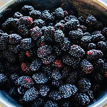 Berries 8.jpg