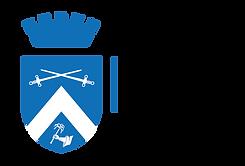 logo SDM ciano orizzontale-01.png