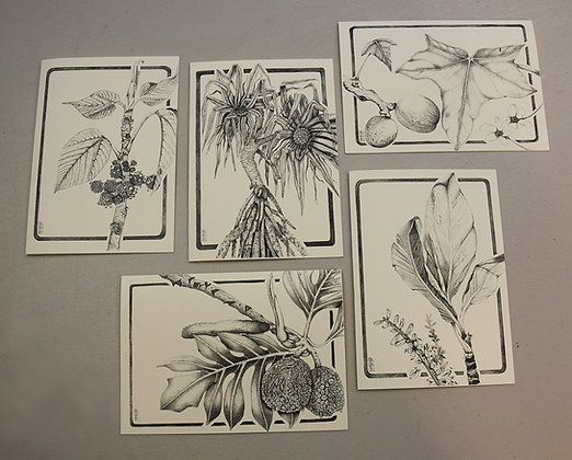 Hoʻea Canoe Garden Cards