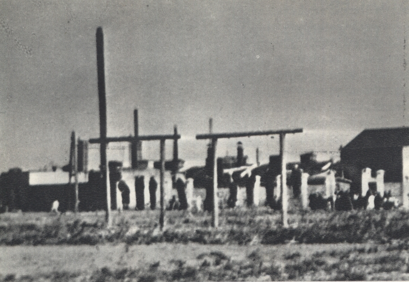 Polish_hostages_hanged_at_Mszczonowska_S