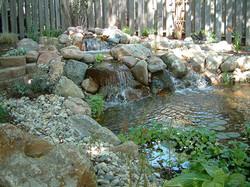 water (4).JPG