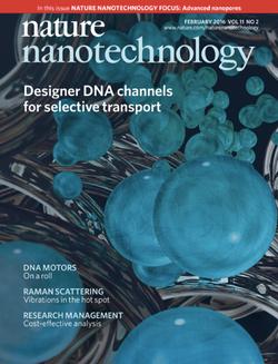 Nat Nanotechnol, 2016, 10: 1038
