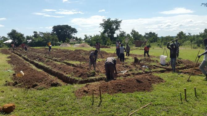 Progress in Busia