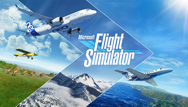 Microsoft Flight Stimulator patch