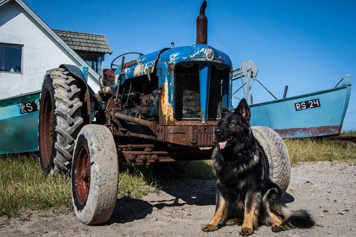 Se lige den fine traktor, John _) den var Easy meget glad for _3