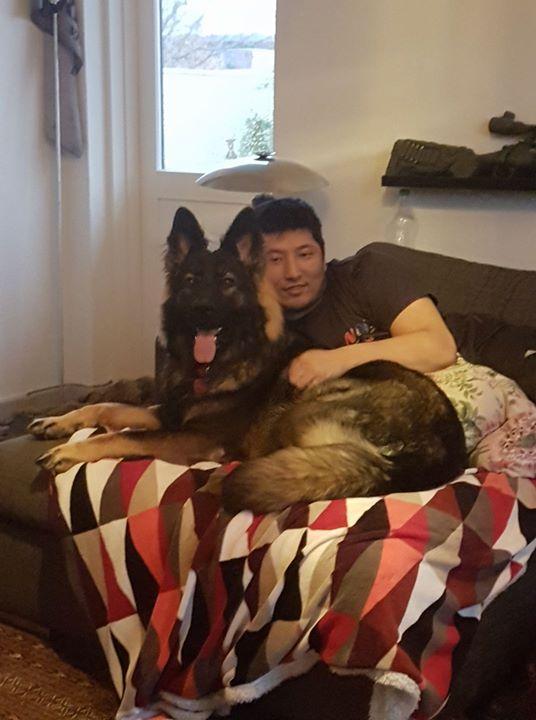 Dennis har fået ny hund _3