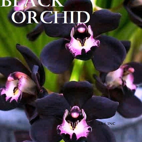 BLACK ORCHID (TYPE)