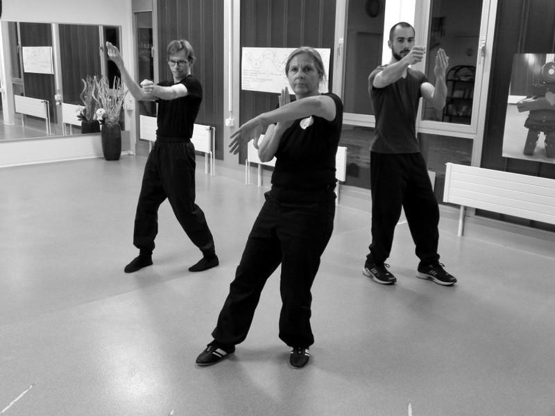 Wing Chun Kung Fu.JPG