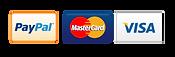 paypal-visa-mastercard-metodi-pagamento-