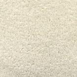 Standard Cream Carpet Garden Room Flooring
