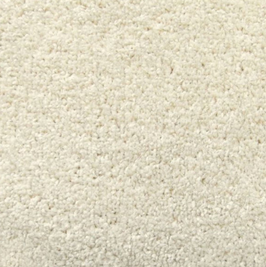 Standard Cream Carpet Garden Room Flooring