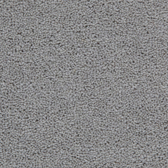 Standard Dove Grey Carpet Garden Room Flooring